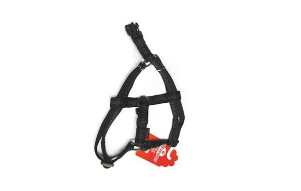 DOUBLE LAYER HARNESS TYPE A WITH SOFT FILLING