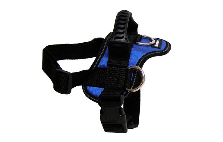 GOGET HARNESS BLUE 3 D-RINGS M