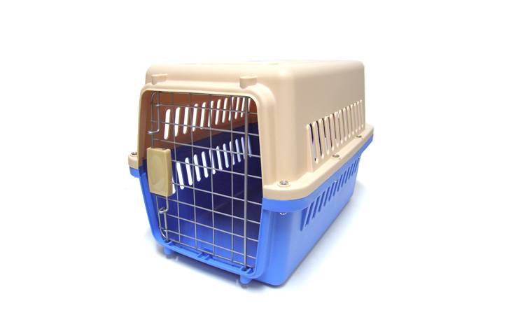 ULYSSES1 PLASTIC CARRIER BLUE