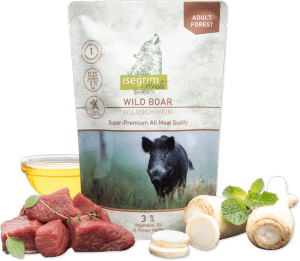 isegrim roots adult forest wild boar